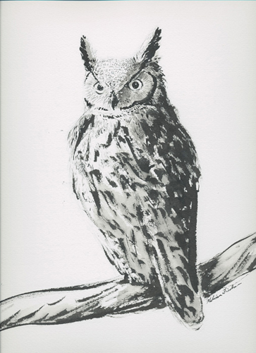 Great Horned Owl by Melissa Fischer